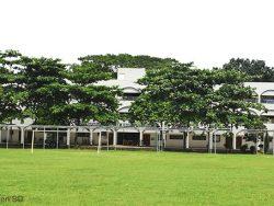College Playground